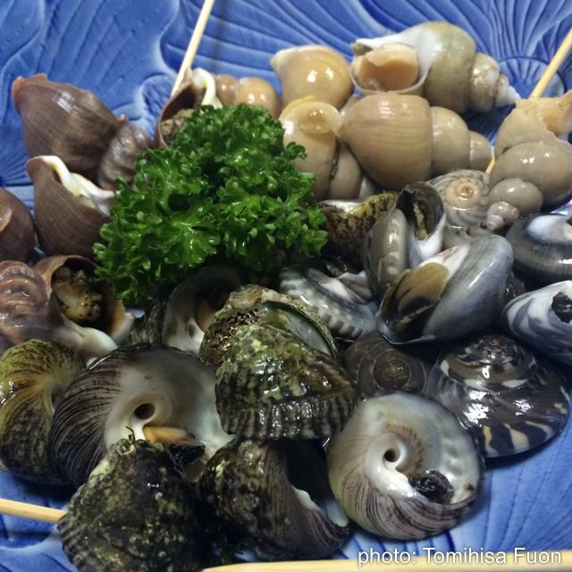 貝料理専門 はまぐり>